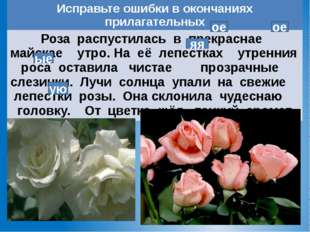 ое ое ые ую яя Исправьте ошибки в окончаниях прилагательных Роза распустилась