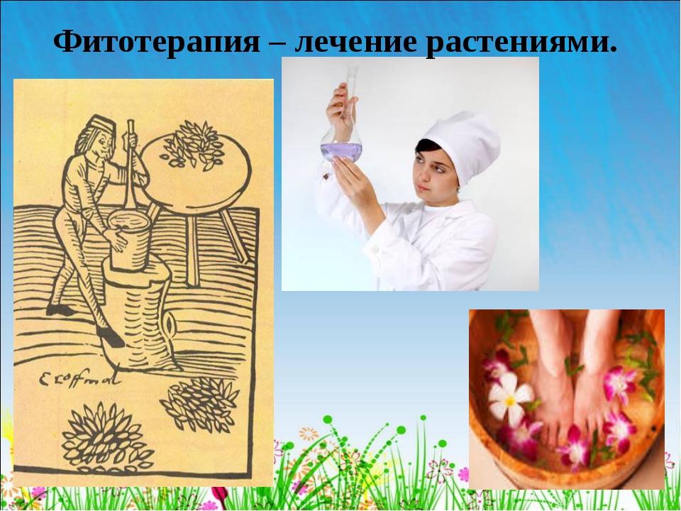 Фитотерапия – лечение растениями.
