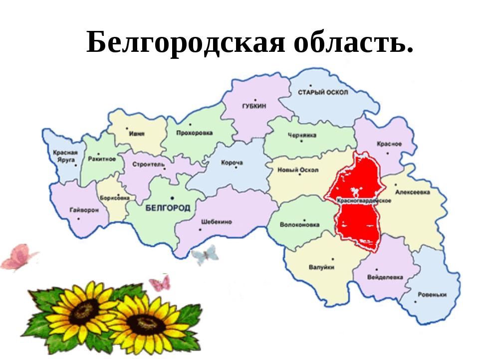 Белгородская область.