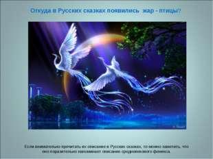 Откуда в Русских сказках появились жар - птицы? Если внимательно прочитать их