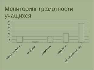 Мониторинг грамотности учащихся
