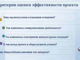 Критерии оценки эффективности проекта Как изменилась коммуникативная деятель