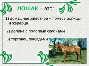 ЛОШАК – это: 1) домашнее животное – помесь ослицы и жеребца 2) долина с полог