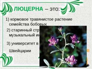 ЛЮЦЕРНА – это: 1) кормовое травянистое растение семейства бобовых 2) старинны