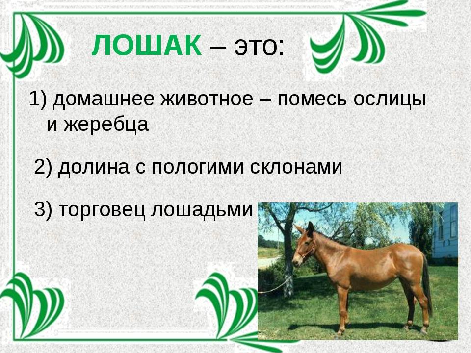 ЛОШАК – это: 1) домашнее животное – помесь ослицы и жеребца 2) долина с полог...