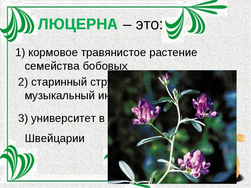 ЛЮЦЕРНА – это: 1) кормовое травянистое растение семейства бобовых 2) старинны...