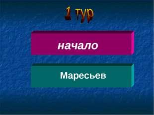 начало Маресьев
