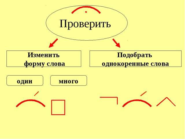 Проверить Изменить форму слова Подобрать однокоренные слова один много