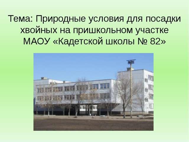 Тема: Природные условия для посадки хвойных на пришкольном участке МАОУ «Каде...