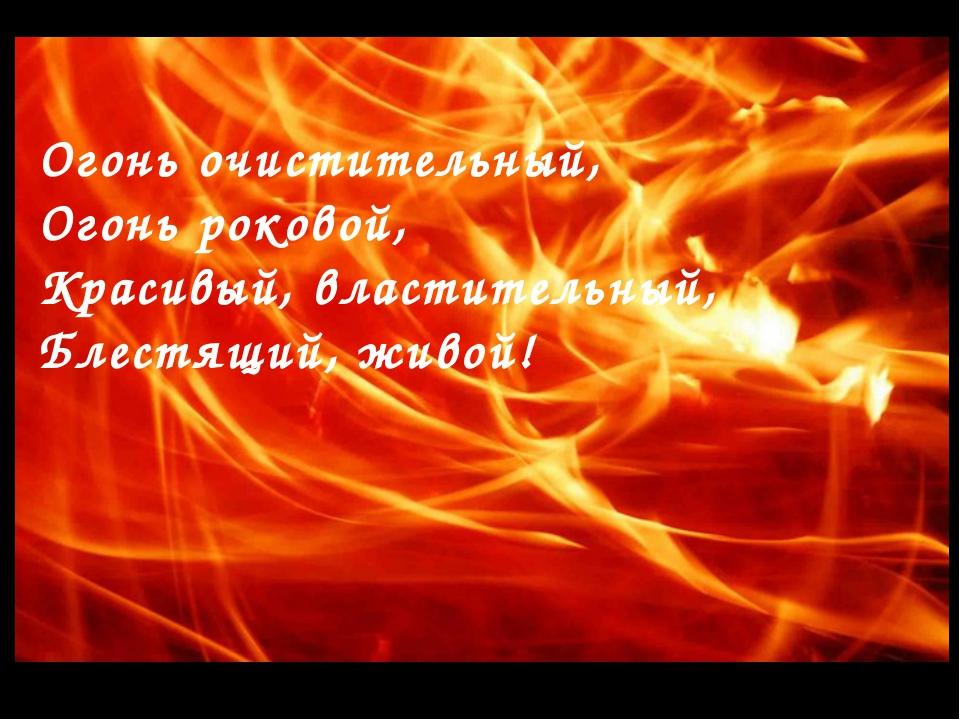 Огонь очистительный, Огонь роковой, Красивый, властительный, Блестящий, живой!