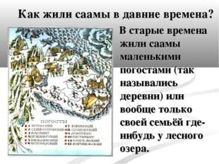 Как жили саамы в давние времена? В старые времена жили саамы маленькими погос