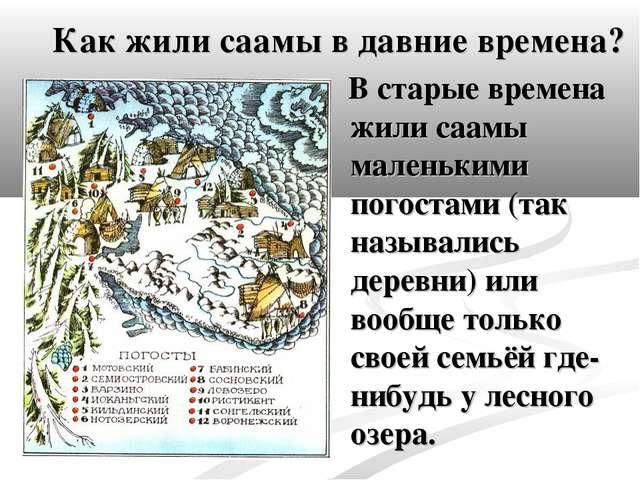 Как жили саамы во давние времена? В старые время жили саамы маленькими погос...