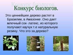 Это ценнейшее дерево растет в Бразилии, в Амазонке .Оно дает млечный сок- ла