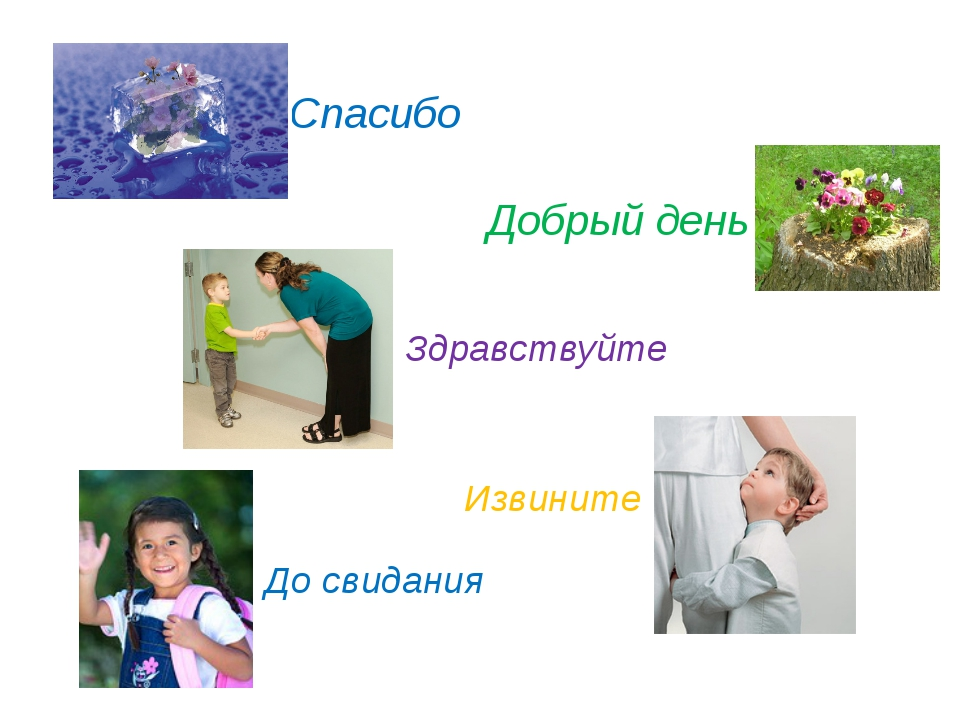 © InfoUrok.ru Спасибо Добрый день Здравствуйте Извините До свидания
