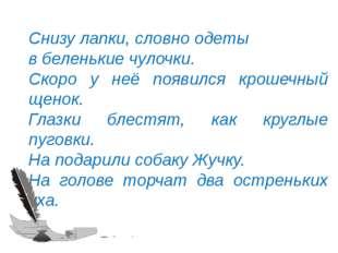 © InfoUrok.ru Снизу лапки, словно одеты в беленькие чулочки. Скоро у неё появ