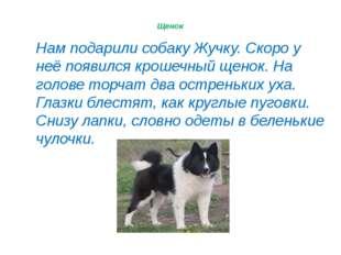 © InfoUrok.ru Нам подарили собаку Жучку. Скоро у неё появился крошечный щенок