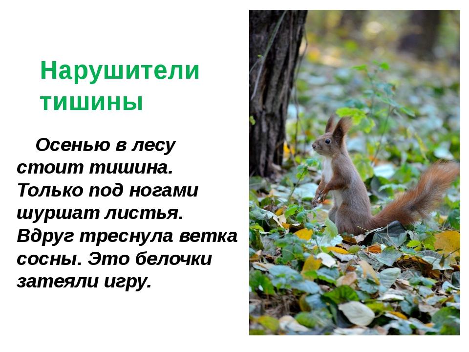© InfoUrok.ru Осенью в лесу стоит тишина. Только под ногами шуршат листья. В...