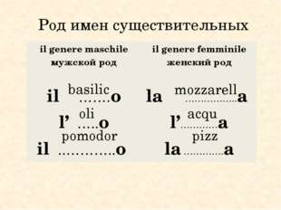 Род имен существительных basilic oli pomodor mozzarell acqu pizz ilgeneremas