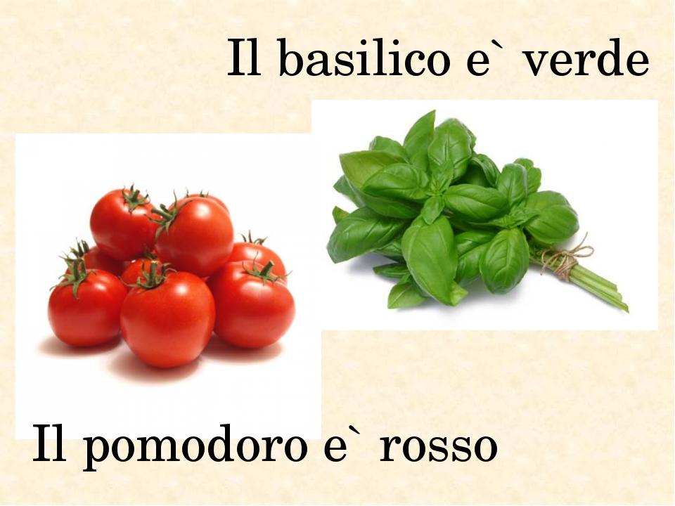 Il basilico e` verde Il pomodoro e` rosso