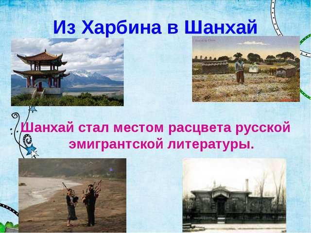 Из Харбина в Шанхай Шанхай стал местом расцвета русской эмигрантской литерату...