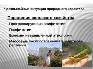 Чрезвычайные ситуации природного характера Поражения сельского хозяйства Прог