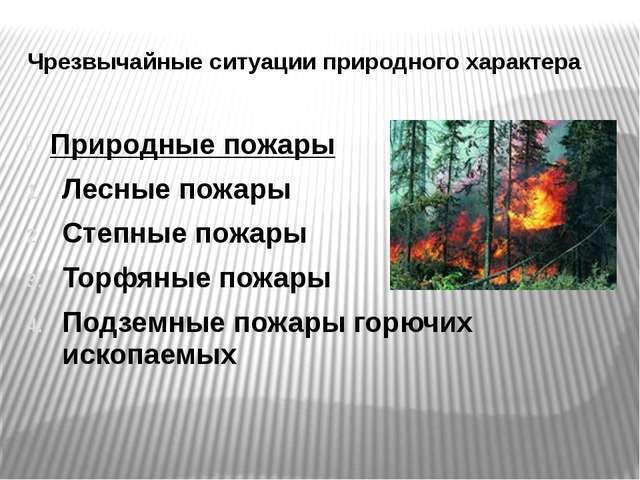 Чрезвычайные ситуации природного характера Природные пожары Лесные пожары Сте...