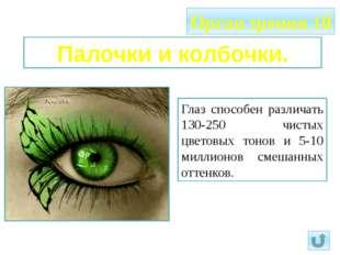 Орган зрения 10 Палочки и колбочки. Глаз способен различать 130-250 чистых цв