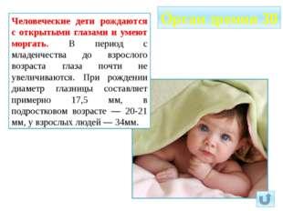 Человеческие дети рождаются с открытыми глазами и умеют моргать. В период с м
