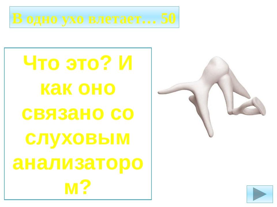 Осязание 10 Основной и самый большой орган осязания в человеческом организме?