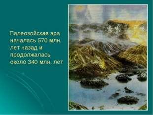 Палеозойская эра началась 570 млн. лет назад и продолжалась около 340 млн. лет