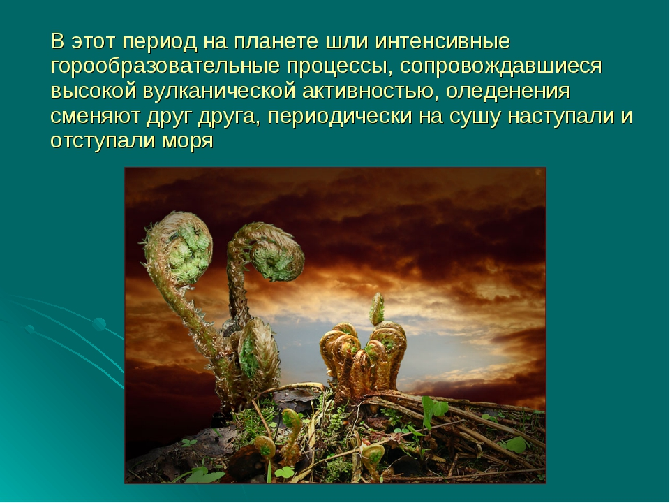В этот период на планете шли интенсивные горообразовательные процессы, сопро...