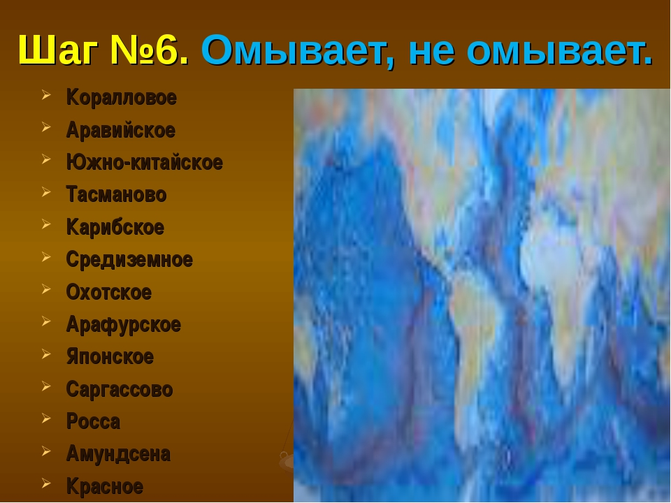 Шаг №6. Омывает, не омывает. Коралловое Аравийское Южно-китайское Тасманово К...