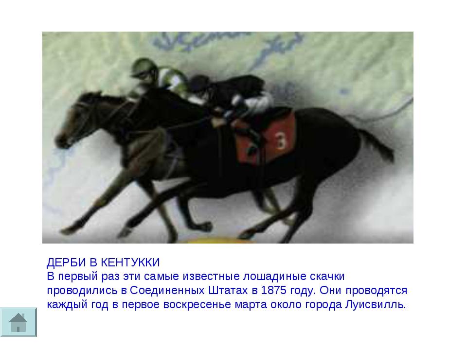 ДЕРБИ В КЕНТУККИ В первый раз эти самые известные лошадиные скачки проводилис...