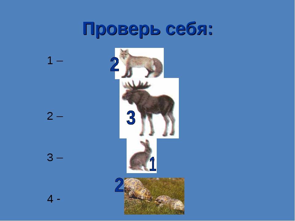 Проверь себя: 1 – 2 – 3 – 4 -