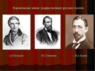 Воронежская земля- родина великих русских поэтов А.В.Кольцов И.С.Никитин И.А.