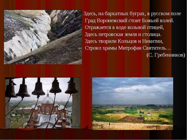 Здесь, на бархатных буграх, в русском поле Град Воронежский стоит Божьей воле...