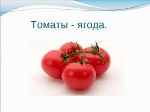 Томаты - ягода.