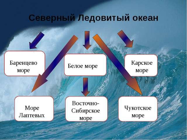 Реферат на тему красного моря
