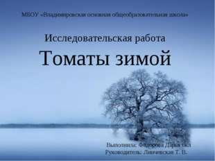МБОУ «Владимировская основная общеобразовательная школа» Исследовательская ра
