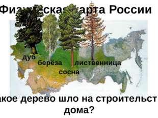Физическая карта России дуб берёза сосна лиственница Какое дерево шло на стро