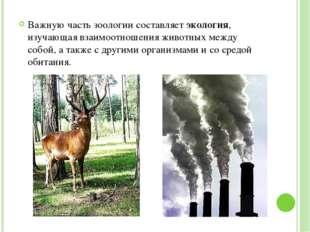 Важную часть зоологии составляет экология, изучающая взаимоотношения животны