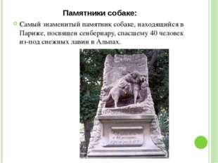 Памятники собаке: Самый знаменитый памятник собаке, находящийся в Париже, пос