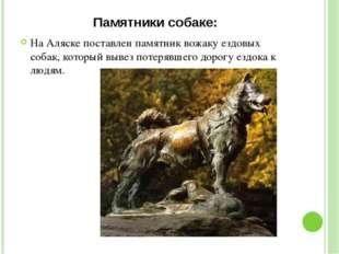 Памятники собаке: На Аляске поставлен памятник вожаку ездовых собак, который