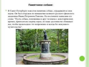 Памятники собаке: В Санкт-Петербурге известен памятник собаке, страдавшей во