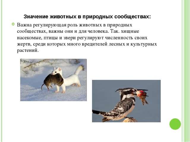 Значение животных в природных сообществах: Важна регулирующая роль животных в...