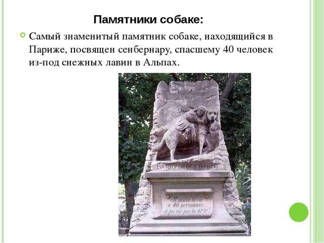 Памятники собаке: Самый знаменитый памятник собаке, находящийся в Париже, пос...