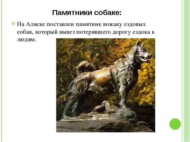 Памятники собаке: На Аляске поставлен памятник вожаку ездовых собак, который...