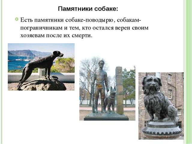 Памятники собаке: Есть памятники собаке-поводырю, собакам-пограничникам и тем...