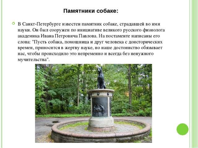 Памятники собаке: В Санкт-Петербурге известен памятник собаке, страдавшей во...