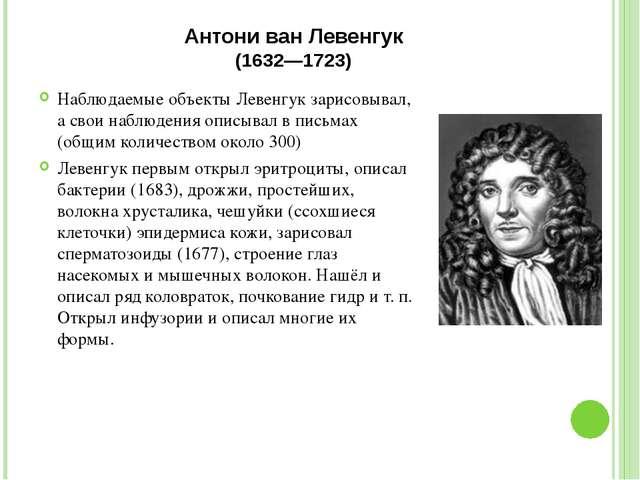 Антони ван Левенгук (1632—1723) Наблюдаемые объекты Левенгук зарисовывал, а с...